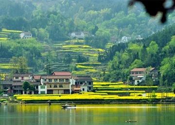 中国富硒土壤核心区全球优质水稻产区